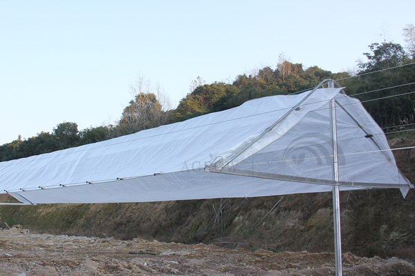 Agtek + Vineyard Anti-hail Gable System